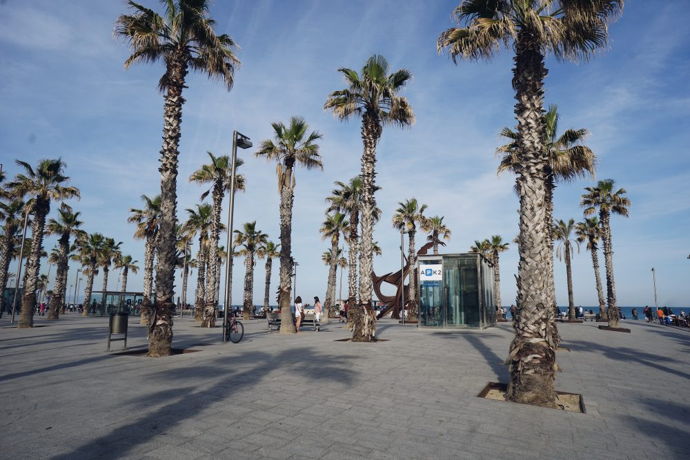 THE MOVING FEET - My favorite places in Barcelona