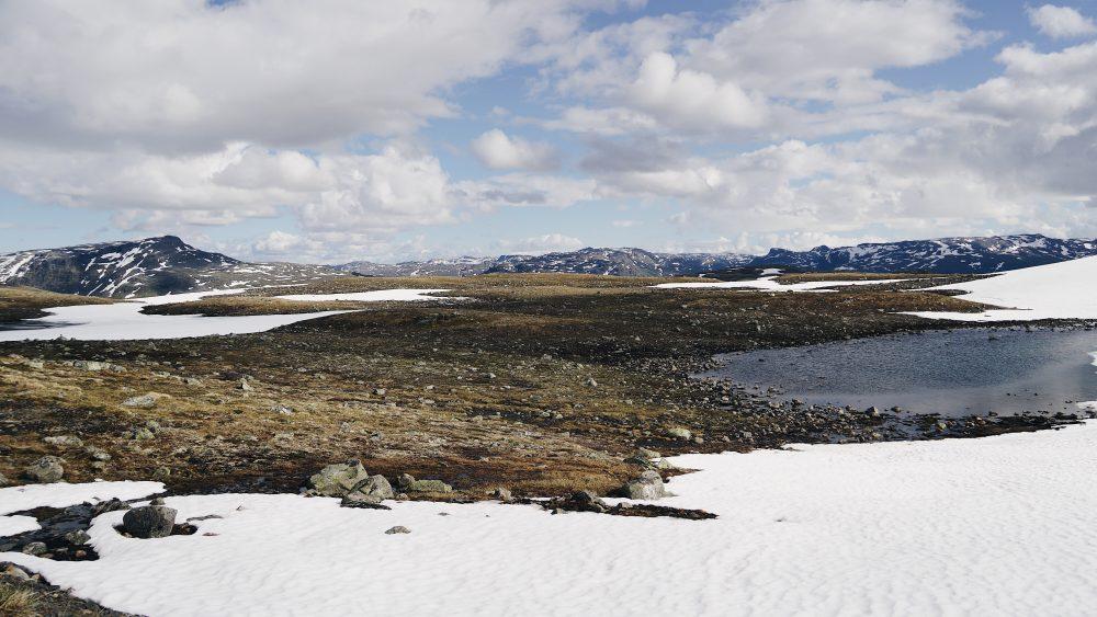 THE MOVING FEET - Deux semaines de road trip en Norvège